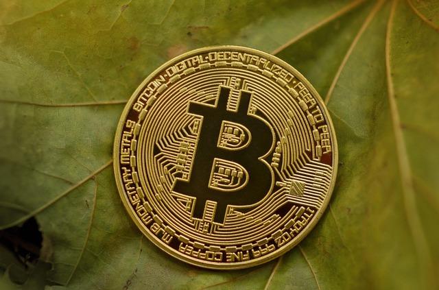 mince virtuální digitální