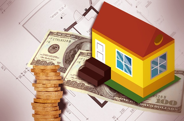 dům, peníze, projekt domu